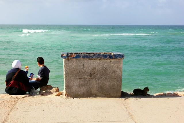 coast-of-alexandria-february-2013